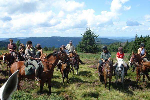 centre equestre senonches